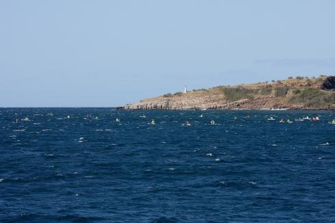Flotilla of kayakers