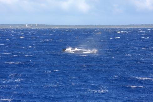 comp pod-high wind & heavy seas